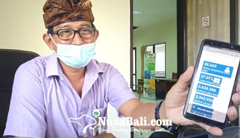 www.nusabali.com-pandemi-jumlah-petani-di-gianyar-bertambah
