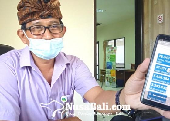 Nusabali.com - pandemi-jumlah-petani-di-gianyar-bertambah