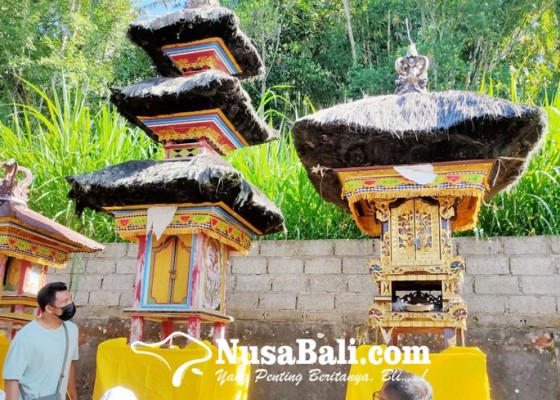 Nusabali.com - keris-sakral-di-pura-dadia-pasek-kayu-selem-raib