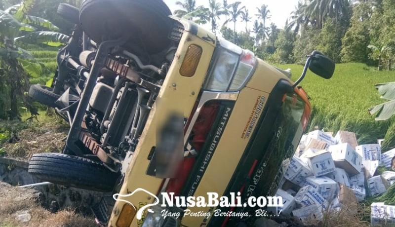 www.nusabali.com-rem-blong-truk-muat-buah-nyungsep-ke-sawah