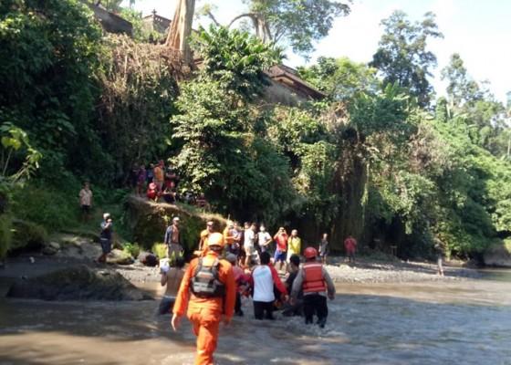 Nusabali.com - pekak-tewas-terlempar-ke-jurang-sungai-ayung-sedalam-15-meter