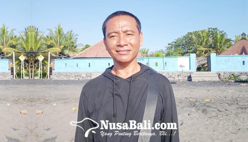 www.nusabali.com-made-kikik-mantan-pemabuk-pelestari-tukik