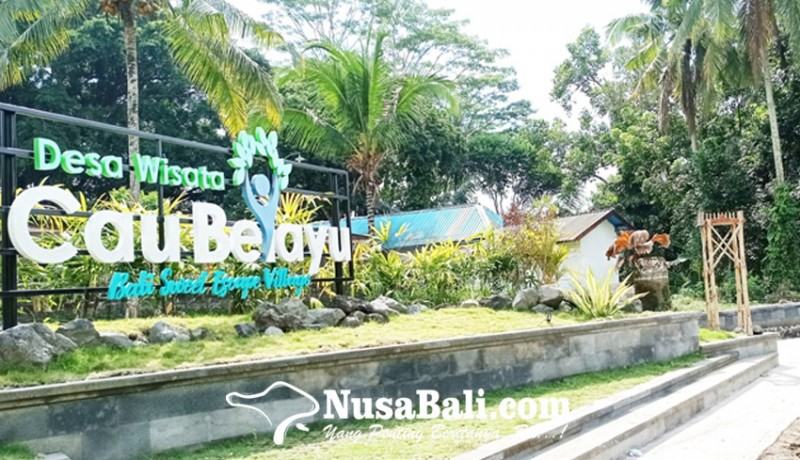 www.nusabali.com-desa-cau-belayu-bangun-taman-desa
