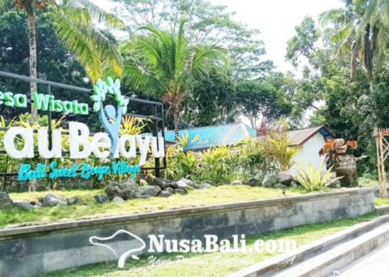 Nusabali.com - desa-cau-belayu-bangun-taman-desa