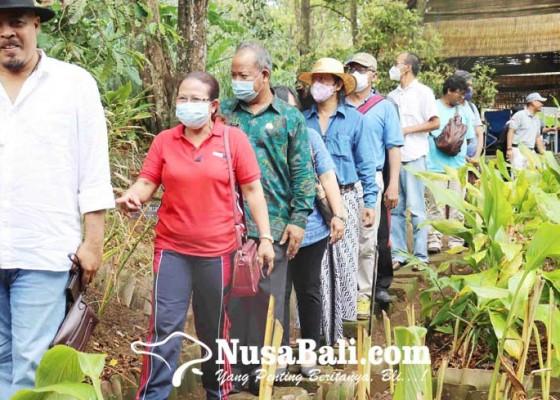 Nusabali.com - museum-rempah-sang-natha-dibuka-untuk-edukasi