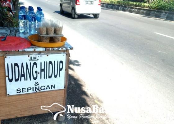 Nusabali.com - bisnis-ini-menjanjikan-di-masa-pandemi
