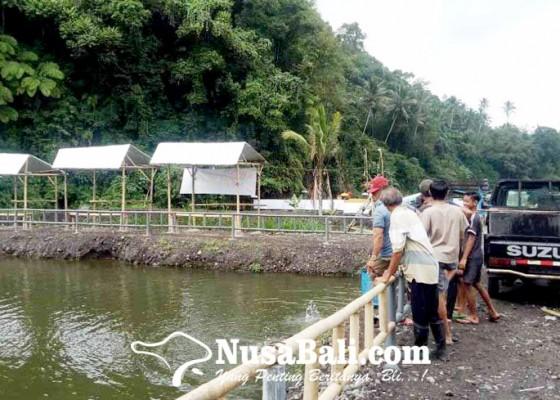Nusabali.com - perbekel-muncan-bangun-kolam-pancing