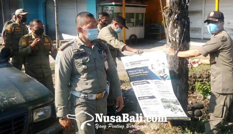 www.nusabali.com-marak-reklame-bodong-sakiti-pohon