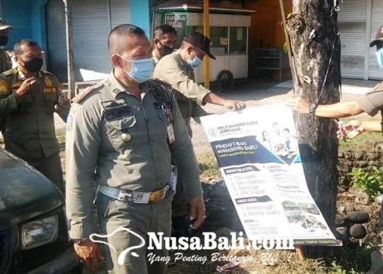 Nusabali.com - marak-reklame-bodong-sakiti-pohon