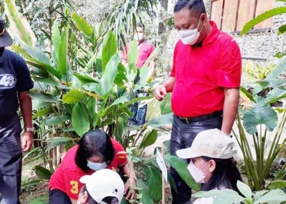 Nusabali.com - kebun-raya-gianyar-jadi-destinasi-wisata-edukasi