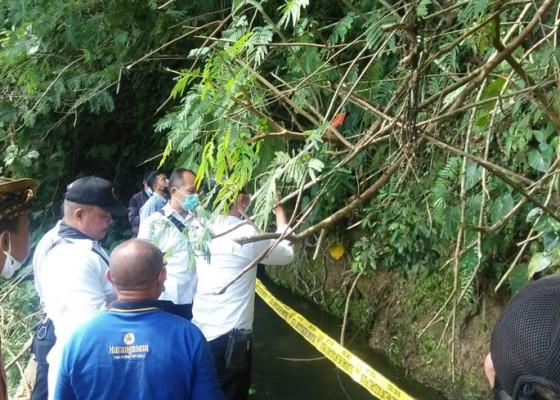 Nusabali.com - pegawai-dinas-pupr-karangasem-tewas-tertimpa-pohon