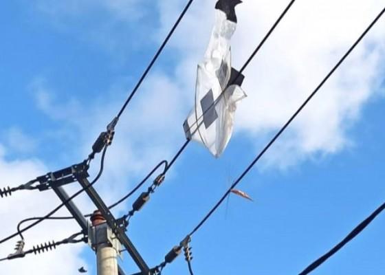 Nusabali.com - layang-layang-bikin-listrik-di-bali-gangguan-380-kali-dalam-tiga-tahun