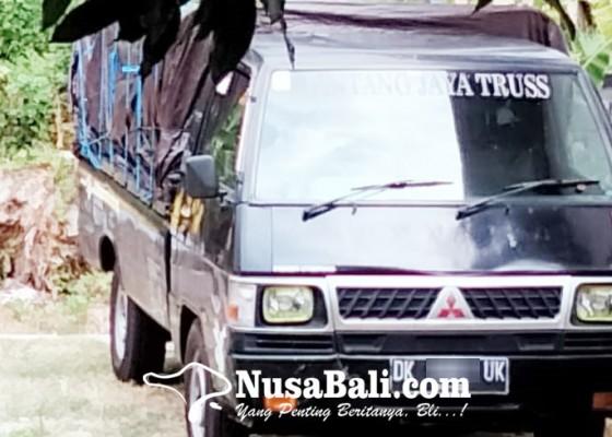 Nusabali.com - polisi-amankan-mobil-pengangkut-kayu-diduga-hasil-pembalakan-liar