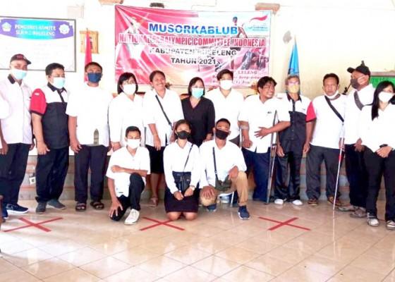 Nusabali.com - putu-christiani-terpilih-jadi-ketua-paralympic-buleleng