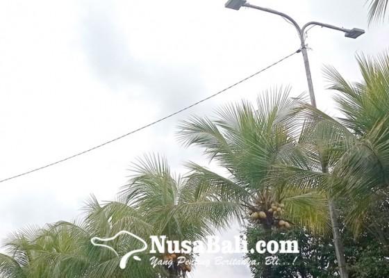 Nusabali.com - tabanan-anggarkan-pemeliharaan-lpju-setahun-rp-12-miliar
