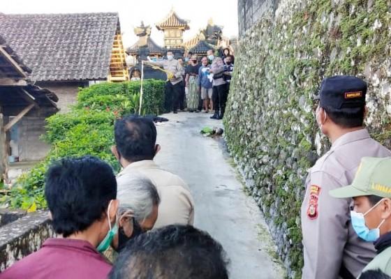 Nusabali.com - polisi-segera-gelar-rekonstruksi-kasus-pembuangan-mayat-bayi-tanpa-tangan