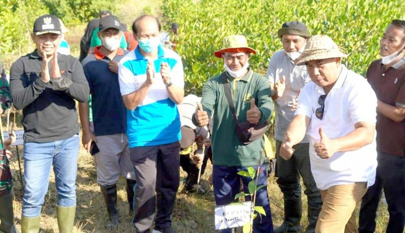 www.nusabali.com-bulan-bung-karno-tamba-ipat-tanam-mangrove-di-budeng