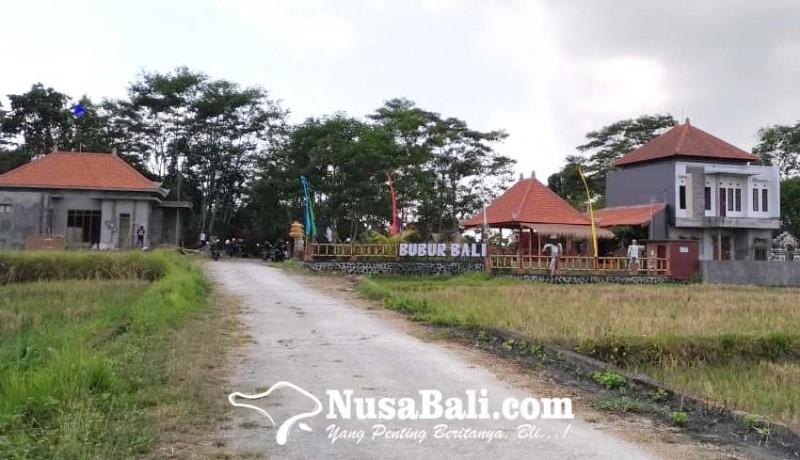 www.nusabali.com-gianyar-klaim-punya-653-ha-pertanian-organik