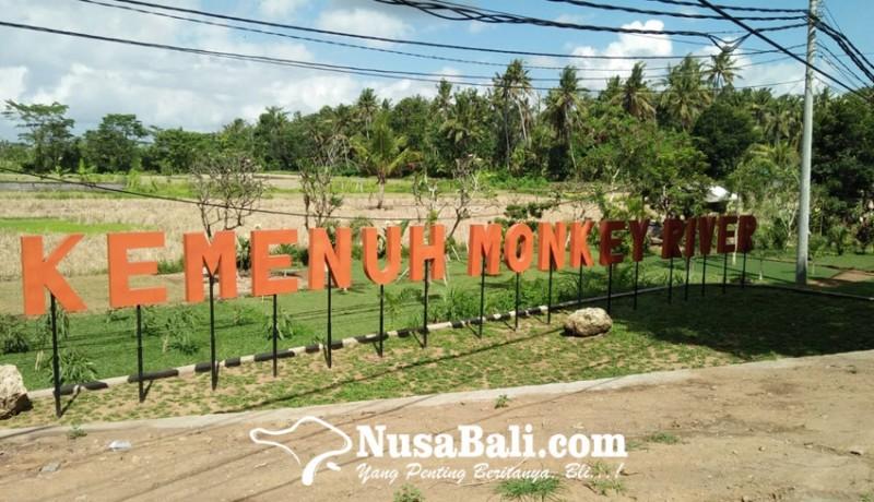 www.nusabali.com-monkey-river-desa-kemenuh-suguhkan-wisata-alam-dan-spiritual-soft-opening-agustus-2021