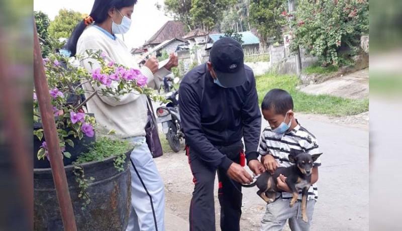 www.nusabali.com-warga-desa-peninjoan-digigit-anjing-rabies