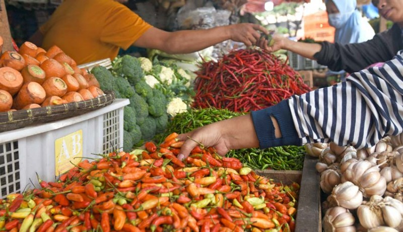 www.nusabali.com-harga-cabai-rawit-naik