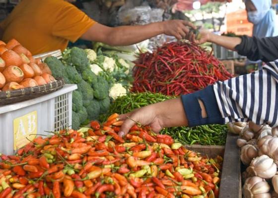 Nusabali.com - harga-cabai-rawit-naik