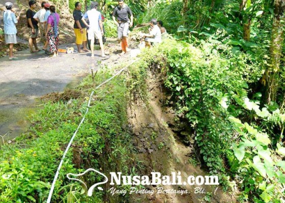 Nusabali.com - diguyur-hujan-bahu-jalan-jebol