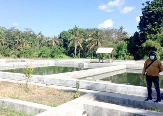 Nusabali.com - proyek-bbi-desa-bahaterhenti