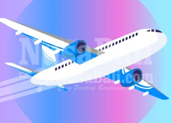 Nusabali.com - selama-ppkm-darurat-penumpang-pesawat-turun