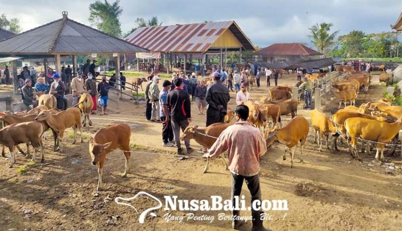 www.nusabali.com-pemotongan-hewan-kurban-digelar-dua-hari