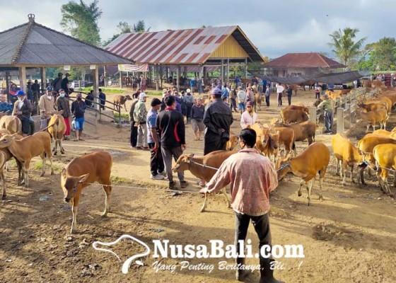 Nusabali.com - pemotongan-hewan-kurban-digelar-dua-hari