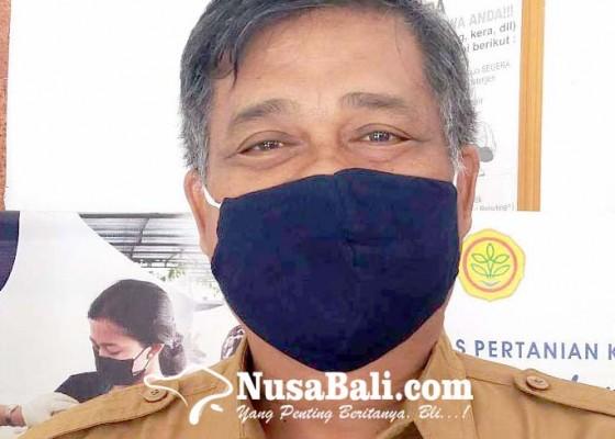 Nusabali.com - distan-buleleng-terjunkan-tim-dokter-hewan
