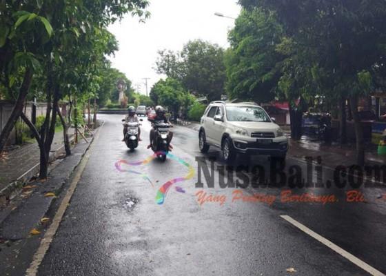 Nusabali.com - pohon-perindang-caplok-bahu-jalan