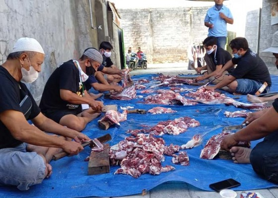 Nusabali.com - ratusan-sapi-dan-kambing-dikurbankan