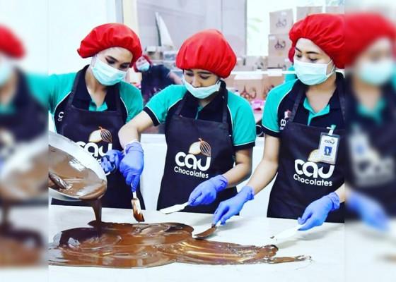 Nusabali.com - bisnis-cokelat-bali-lesu