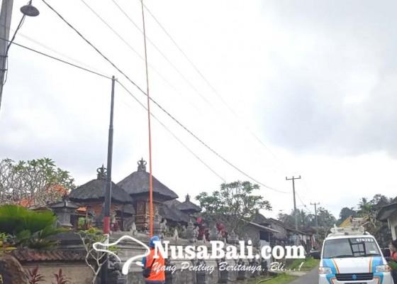 Nusabali.com - akibat-layangan-puluhan-gardu-distribusi-listrik-terdampak