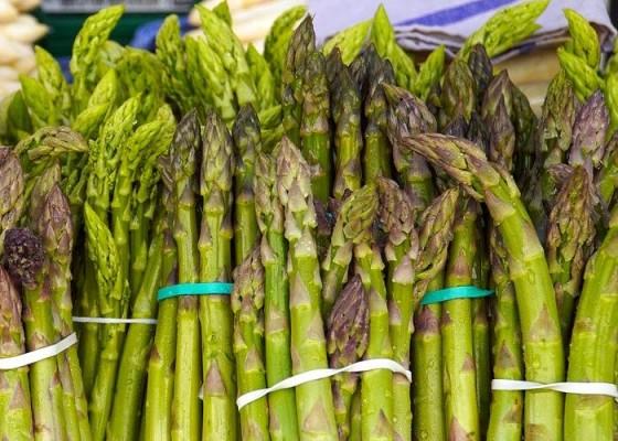 Asparagus - Senggol Bali